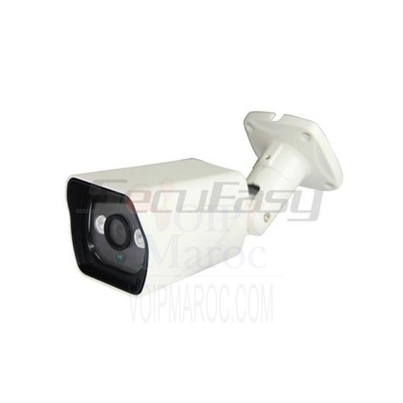 Camera IP 2 MP Etanche Infrarouge avec  POE Fonction D2708