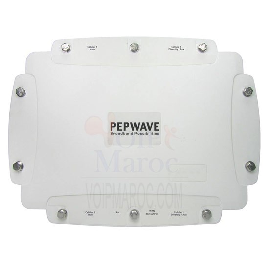 Pepwave Charge Equilibrage 3G GSM 4G HSPA + / LTE Modem Max HD2 IP67